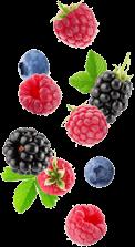 Owoce uprawne